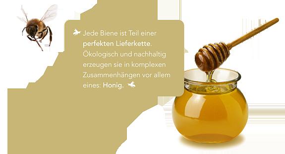 Slogan zum Thema Bienen