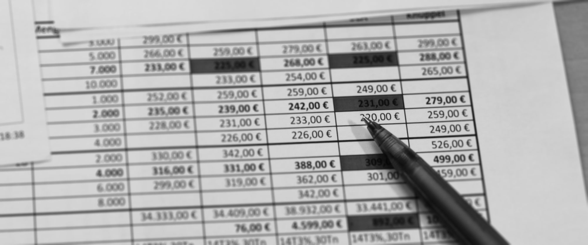 Ausgedruckte Excel-Tabelle mit Preisen in Euro